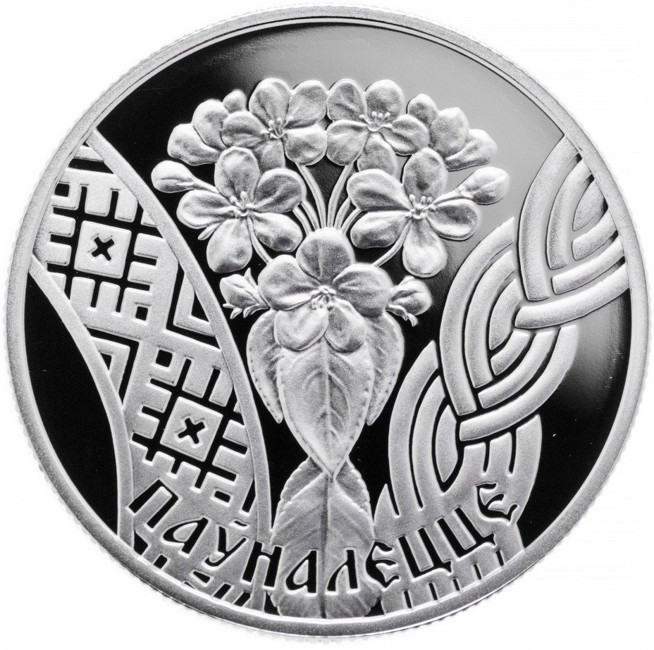 """купить Беларусь 1 рубль 2010 Proof """"Совершеннолетие"""""""
