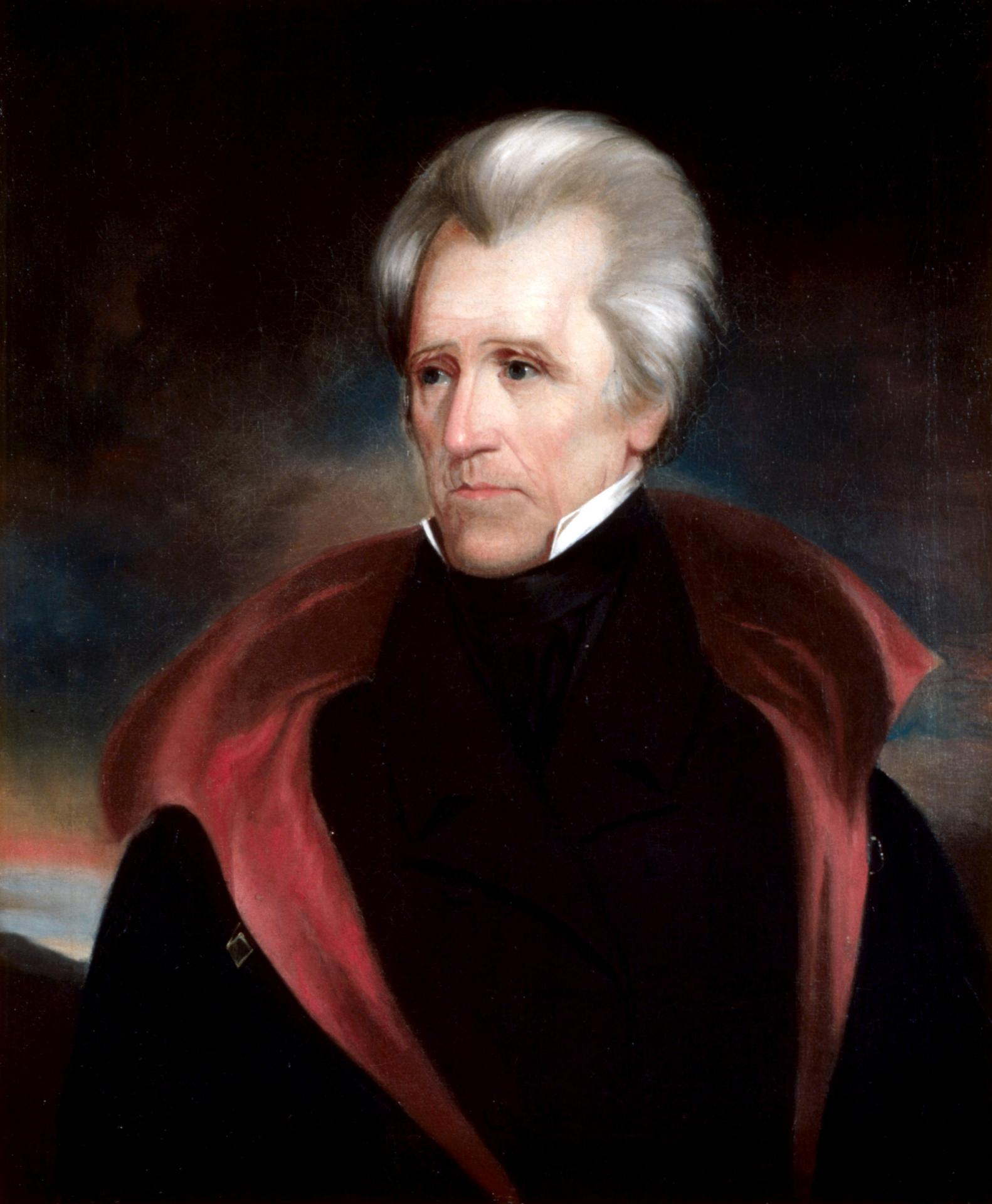 a biography of the seventh president of the united states andrew jackson