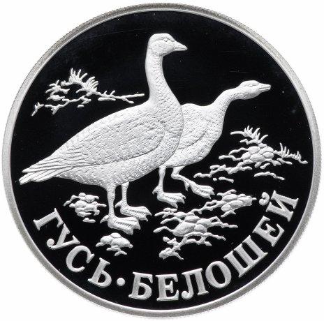 """купить 1 рубль 1998 СПМД """"Красная книга Гусь-белошей"""""""
