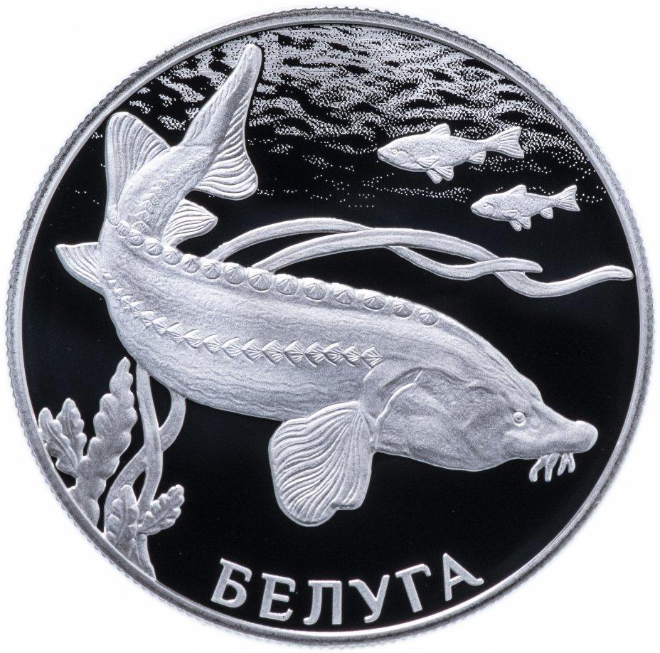 купить 2 рубля 2019 СПМД Proof Белуга