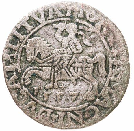 купить Речь Посполитая 1/2 гроша 1557 Сигизмунд II Август