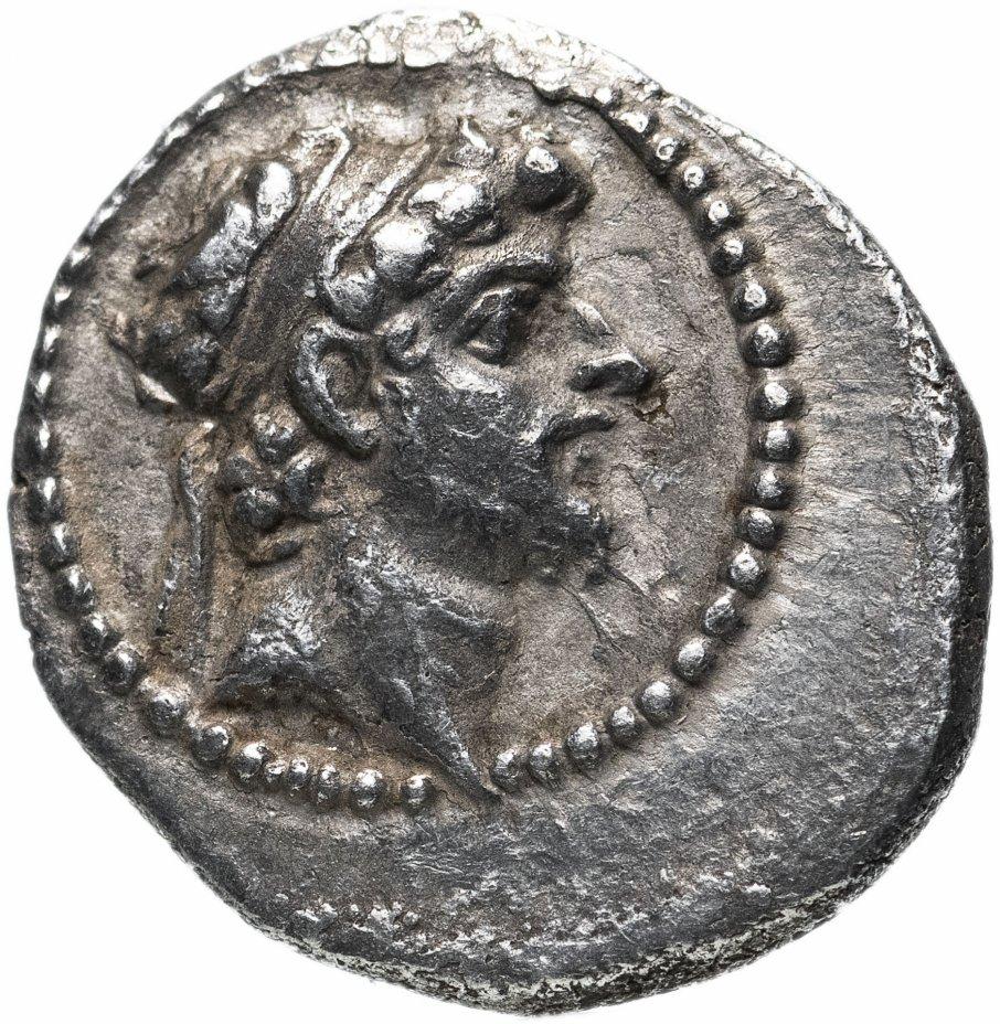купить Государство Селевкидов, Селевк VI Эпифан Никатор, 96-94 годы до Р.Х., гемидрахма.
