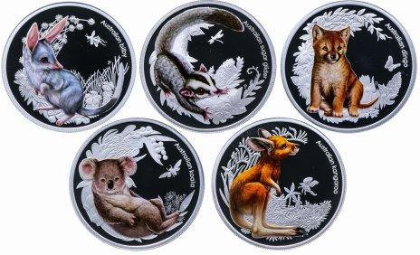 купить Австралия набор 50 центов 2010-2011 «Детеныши австралийских животных» из 5 монет