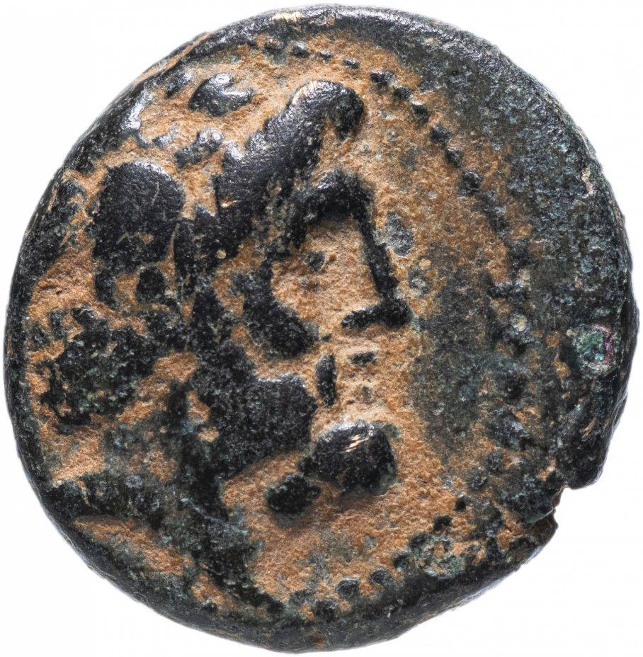 купить Финикия, Арад, 149/8 год до Р.Х., АЕ16.