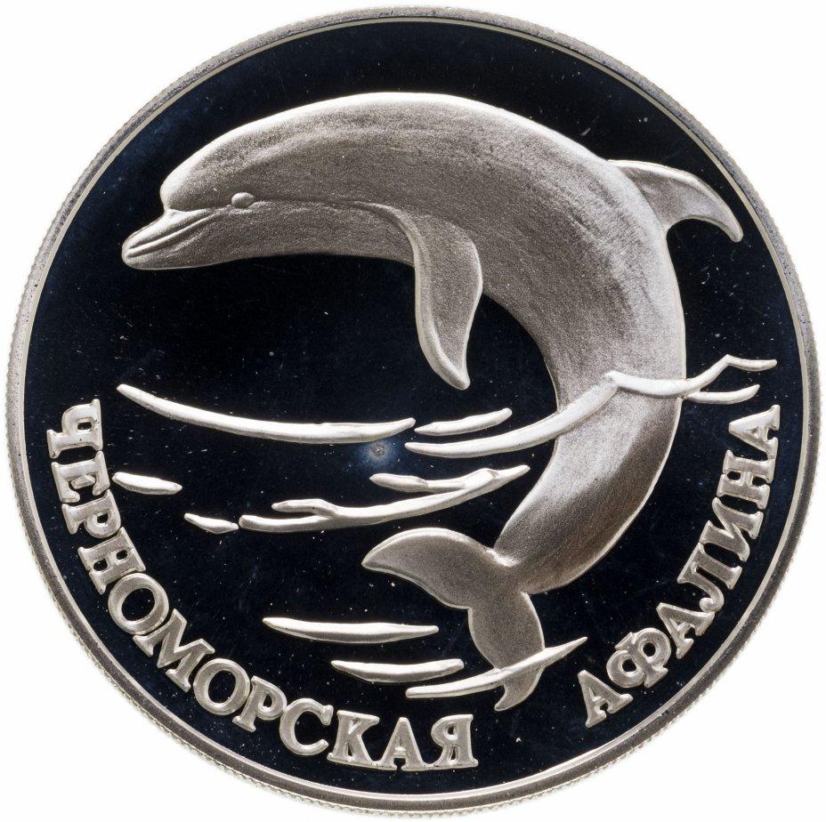 купить 1 рубль 1995 СПМД черноморская афалина