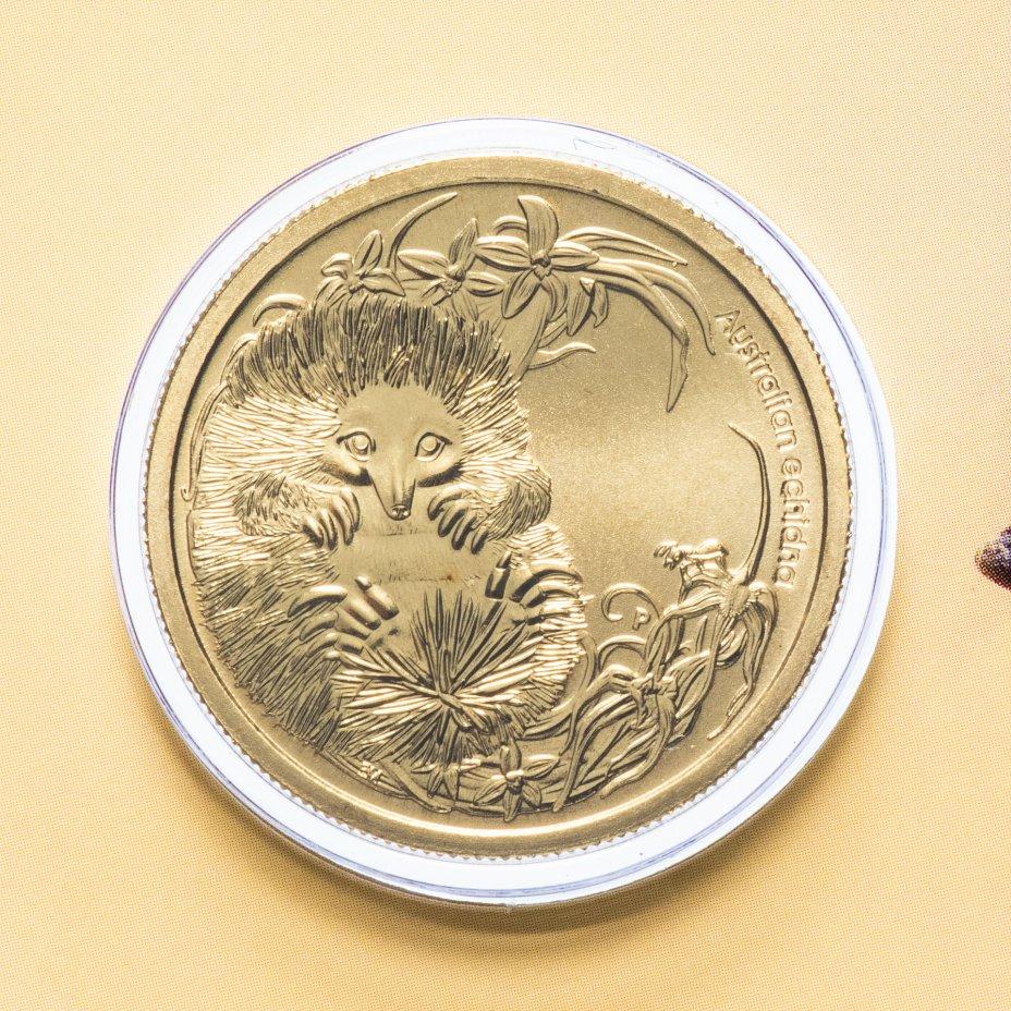 """купить Австралия 1 доллар (dollar) 2013 """"Детёныши диких животных - Ехидна"""" (в конверте, с маркой)"""