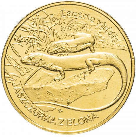 """купить Польша 2 злотых 2009 """"Ящерица (Lizard) (Jaszczurka)"""""""