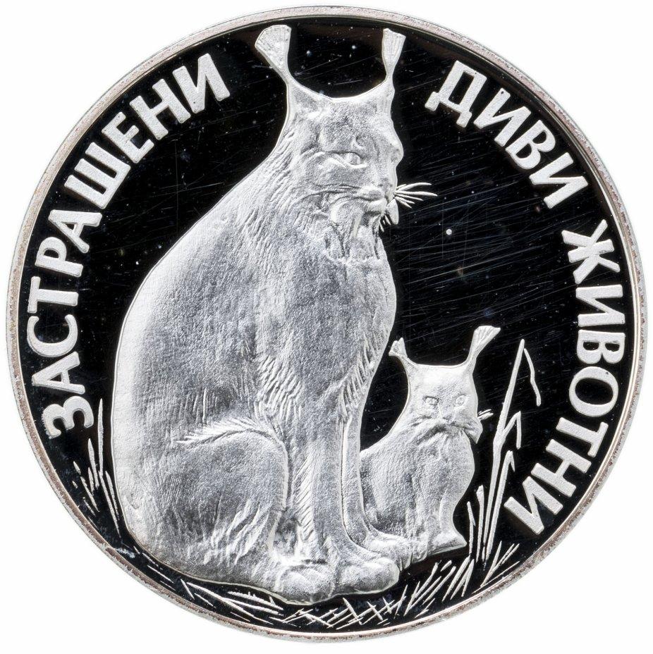 купить Болгария 25левов 1990  Исчезающие животные - Рысь