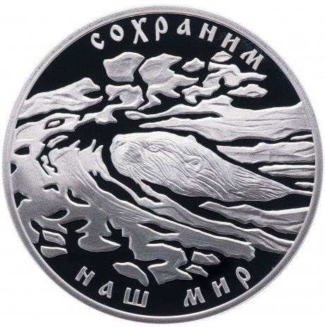 """купить 3 рубля 2008 СПМД Proof """"Сохраним наш мир - речной бобр"""""""