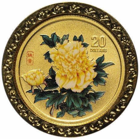 """купить Острова Кука 20 долларов 2008 """"Пионы - цветы небесной красоты"""" в стеклянной рамке на подставке"""