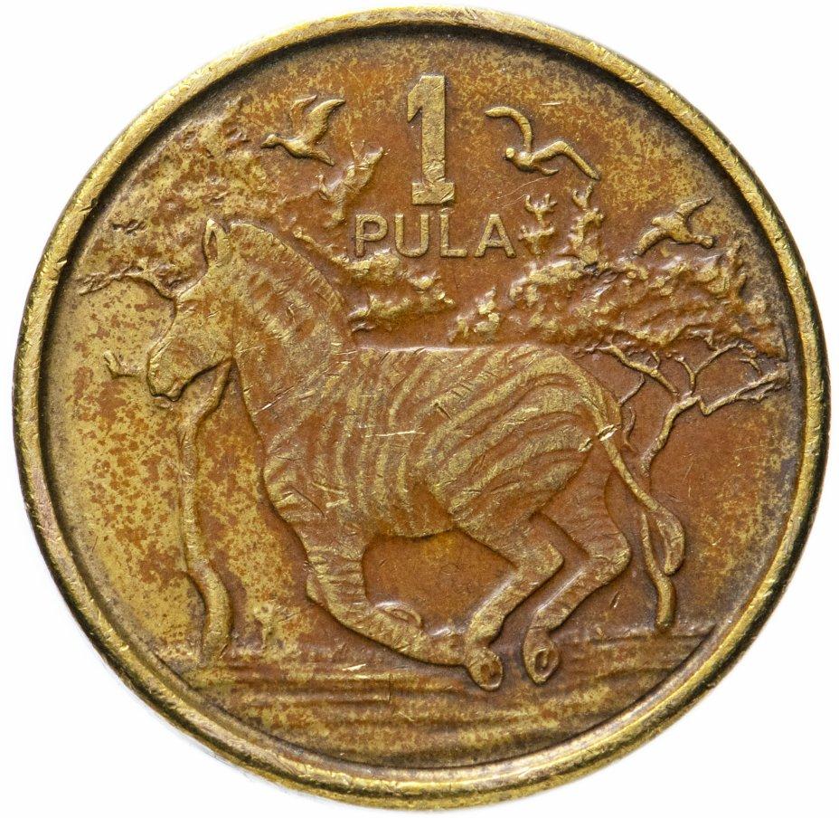 купить Ботсвана 1 пула (pula) 2013