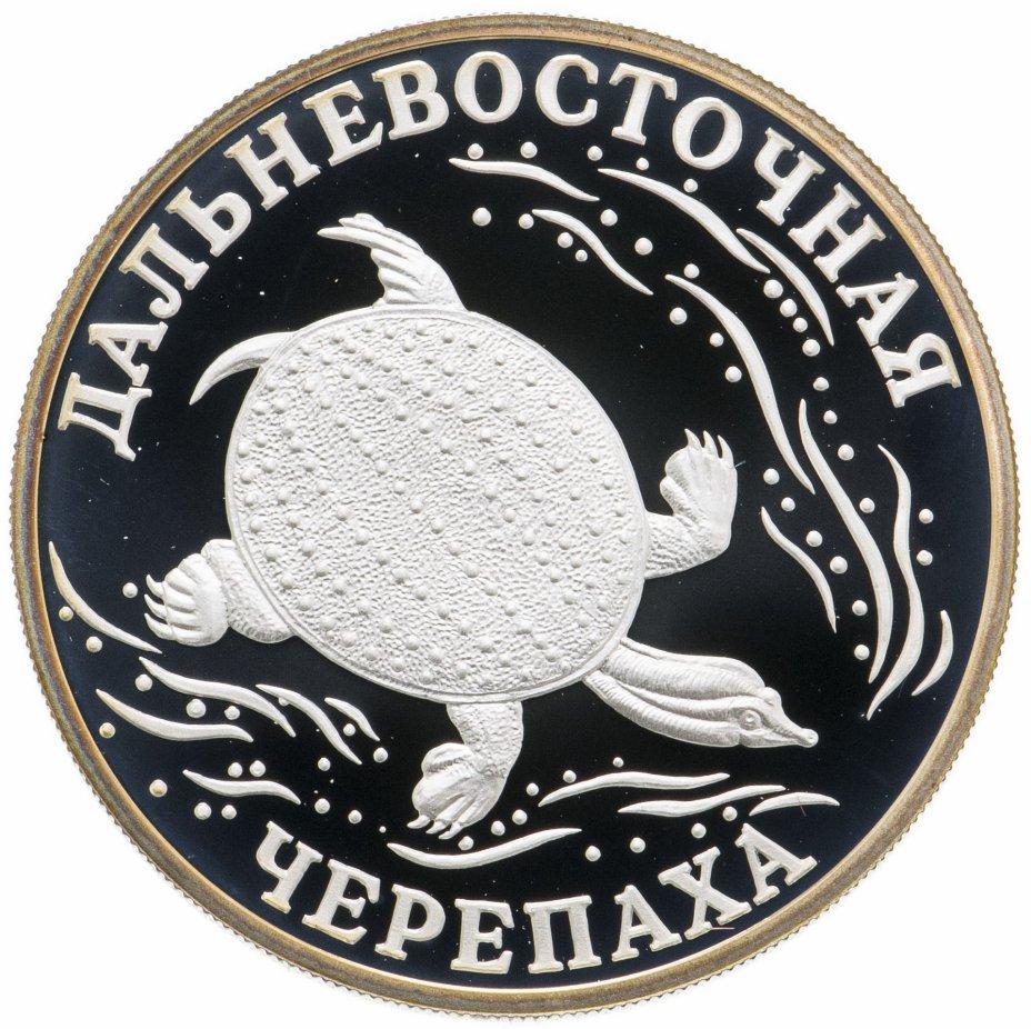 купить 1 рубль 2003 СПМД Дальневосточная черепаха