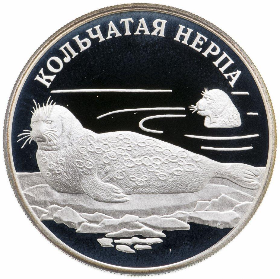 купить 1 рубль 2007 СПМД Кольчатая нерпа (ладожский подвид)