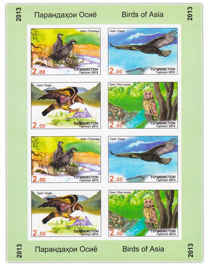 купить Таджикистан 2013 Птицы (Лист из 2-х квартблоков БЕЗЗУБЦОВЫЙ)