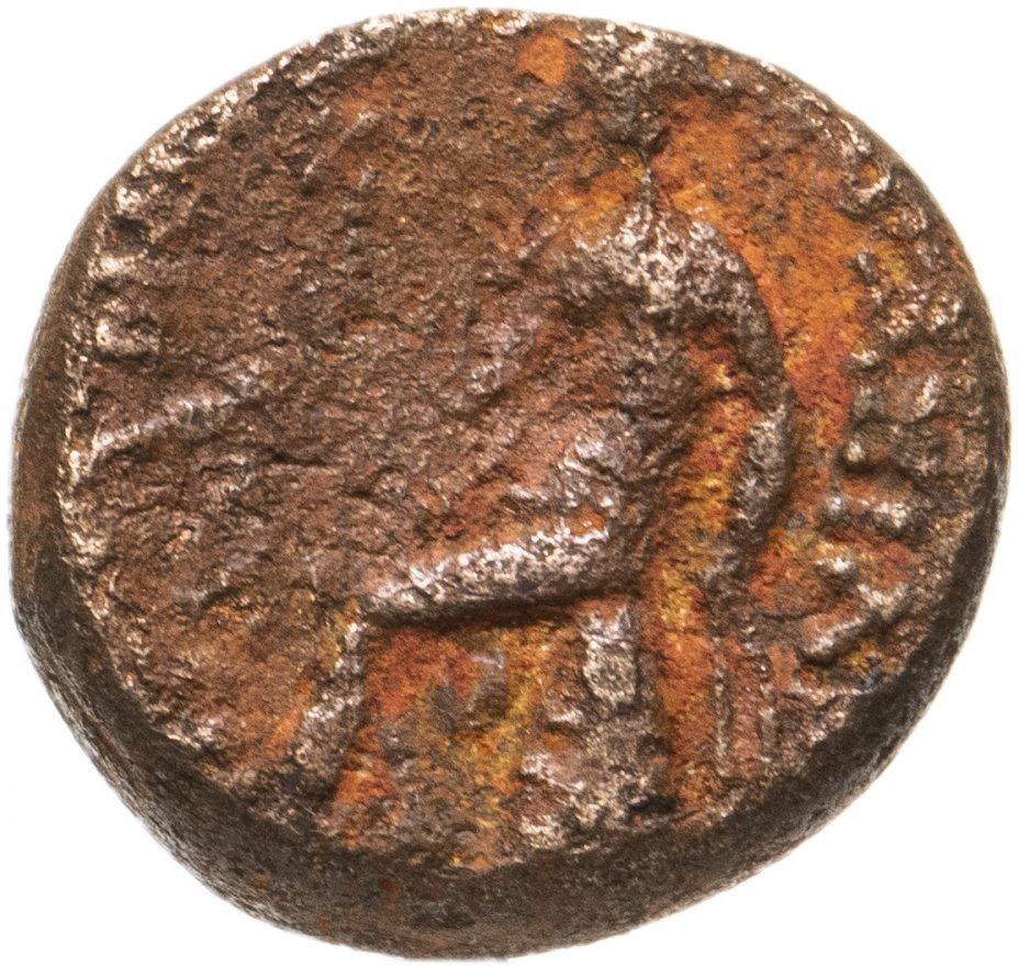 купить Государство Селевкидов, Селевк III Сотер, 225-222 годы до Р.Х., AE13.