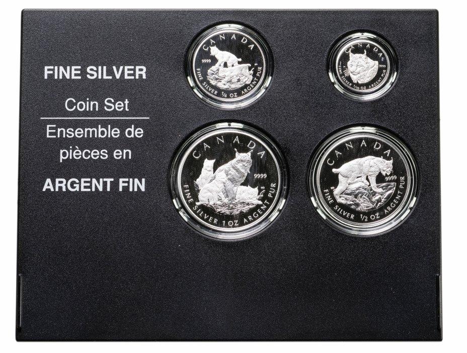 """купить Канада набор из 4-х монет 2005 года """"Рысь"""" в футляре с сертификатом"""