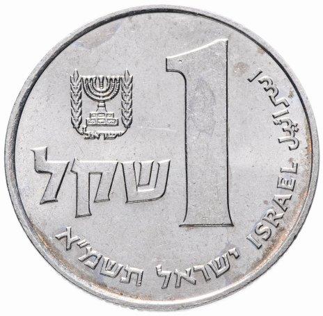 купить Израиль 1 шекель 1981-1985