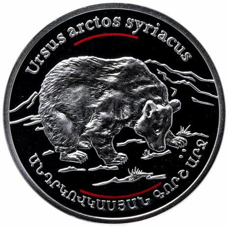 """купить Армения 100 драмов 2006 """"Красная книга - Сирийский бурый медведь"""""""
