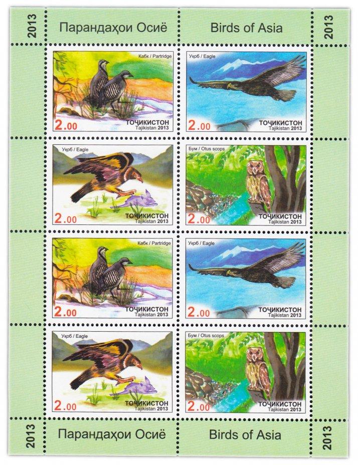 купить Таджикистан 2013 Птицы (Лист из 2-х квартблоков)