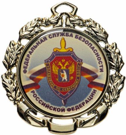 """купить Медаль """"Федеральная служба безопасности. Североморск"""" в футляре"""