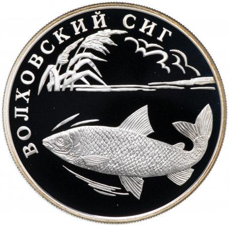 """купить 1 рубль 2005 СПМД """"Красная книга: волховский сиг"""""""