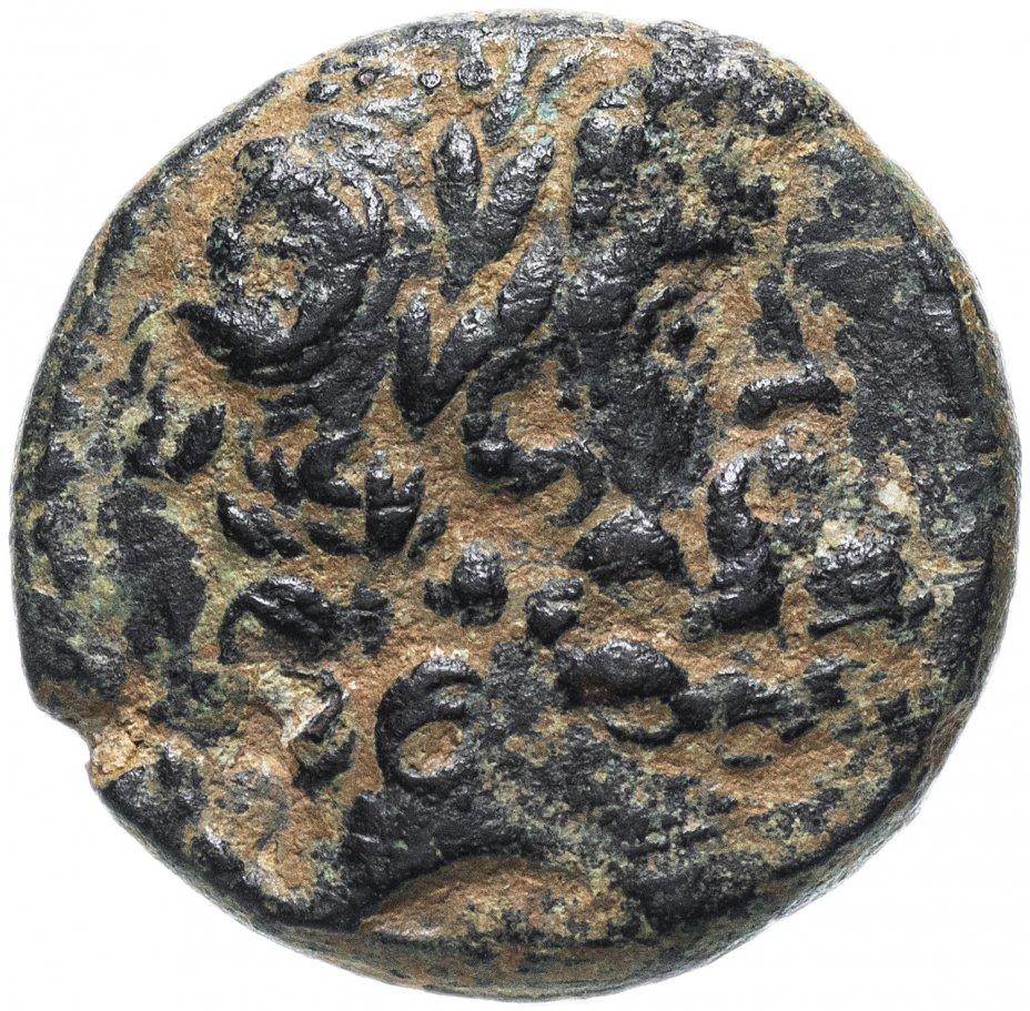 купить Сирия, Антиохия-на-Оронте под римским протекторатом, I век, трихалк.