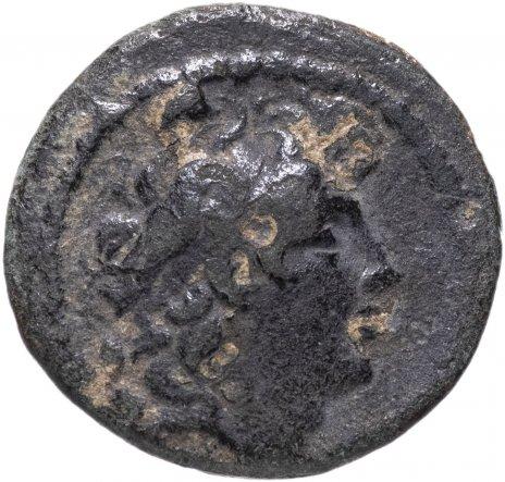 купить Селевкиды, Трифон, 142-138 годы до Р.Х., АЕ19.